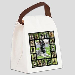 CeeCee (2) Canvas Lunch Bag