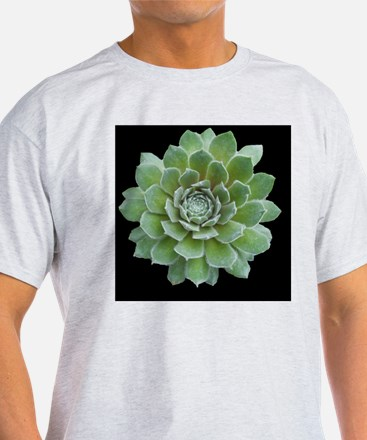 Agave on Black T-Shirt