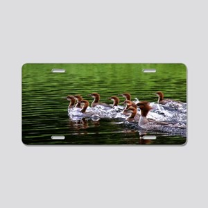 Merganser with Chicks Aluminum License Plate