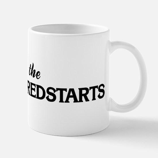 Save the AMERICAN REDSTARTS Mug