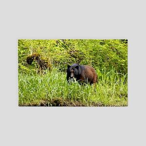 Black Bear 23 x 35 3'x5' Area Rug