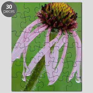 Coneflower in the Rain Puzzle