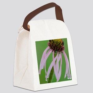 Coneflower in the Rain Canvas Lunch Bag