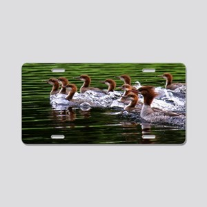 Merganser with Chicks 6 x 1 Aluminum License Plate