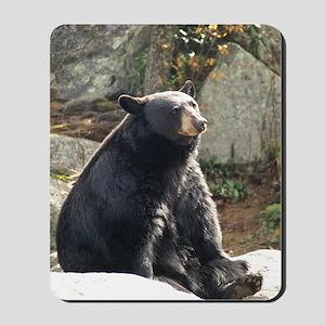 Black Bear Sitting Mousepad
