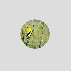 American Goldfinch Mini Button