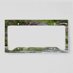 Little Blue Heron License Plate Holder