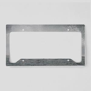 hydroplane License Plate Holder