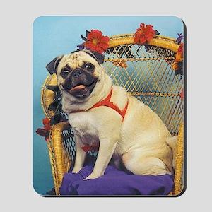Pug in Wicker Chair Mousepad