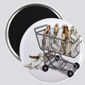 Shopping with Ferrets Magnet