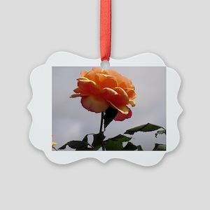 Peach Rose 2 Picture Ornament