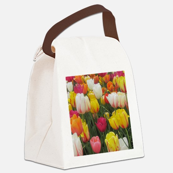 Spring Tulip Field Canvas Lunch Bag