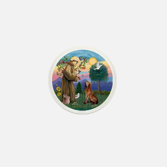 St. Francis - Bloodhound Mini Button