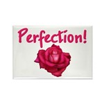 Perfection Rectangle Magnet (10 pack)