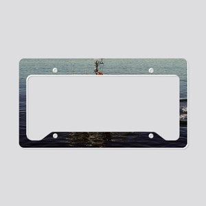 uss excel large framed print License Plate Holder