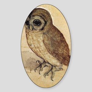Albrecht Durer The Little Owl Sticker (Oval)