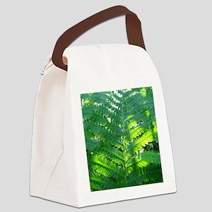 Fern Canvas Lunch Bag