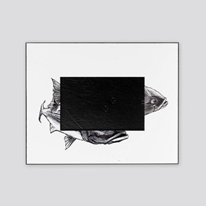 Double Trouble Striped Bass Picture Frame