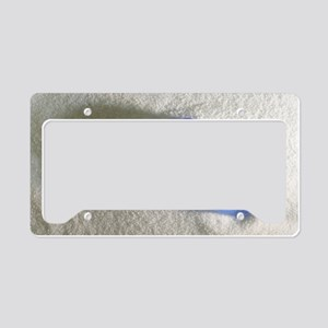 Blue Sea Glass License Plate Holder