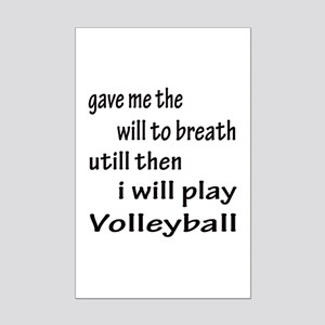 I will play Water Volleyball Mini Poster Print