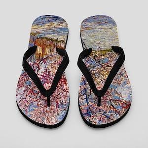Van Gogh Flip Flops