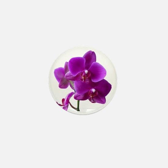Striking Purple Orchid Flower Mini Button