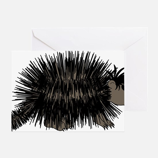Cartoon Porcupine Graphic Greeting Card