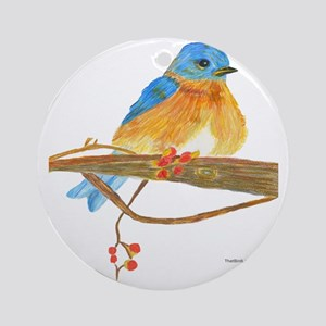 Young male bluebird Round Ornament