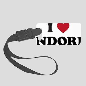 I Love Indore Small Luggage Tag