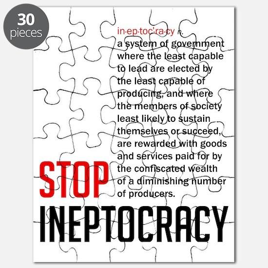 Stop Ineptocracy Puzzle