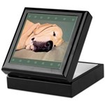 Yellow Labrador Dog Sleeps Keepsake Box