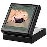 Yellow Labrador Dog Sleeps Keepsake Box