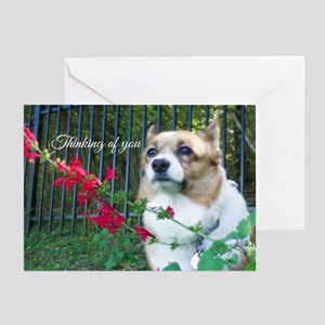 Thinking of You Corgi Greeting Card