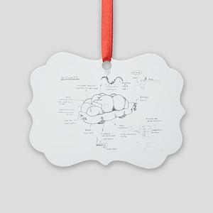 Cloud-9 blueprint Picture Ornament