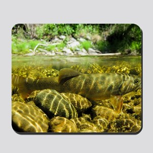 Dwarf Dolly Varden Mousepad