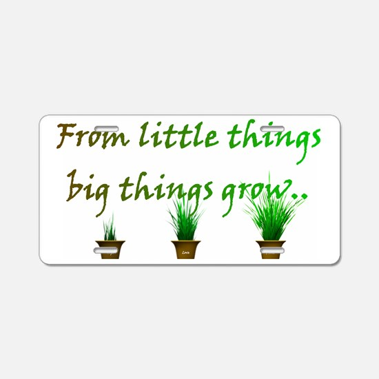 From little things big thin Aluminum License Plate