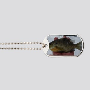 Fish #6-Bluegill Dog Tags