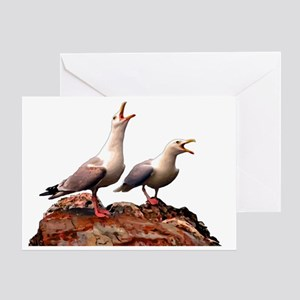 Catcalling Sea Gulls Greeting Card