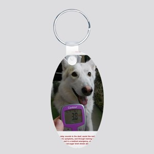 Meter poster Aluminum Oval Keychain