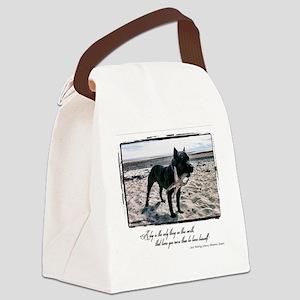 #TEAMLLOYD Canvas Lunch Bag