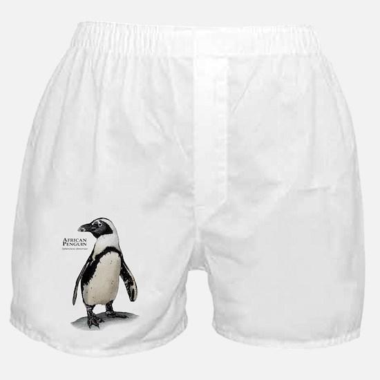 African Penguin Boxer Shorts