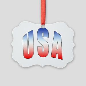 USA Picture Ornament