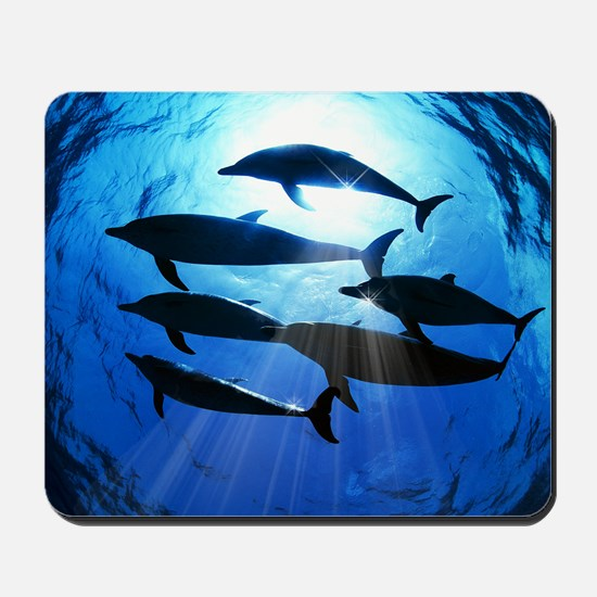 Porpoises in the Ocean with Sun Rays Str Mousepad