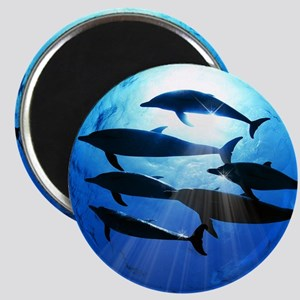 Porpoises in the Ocean with Sun Rays Stream Magnet