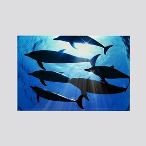 Porpoises in the Ocean with Sun R Rectangle Magnet