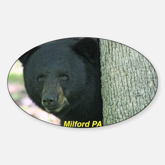 Benjamin E. Bear Postcard Milford P Sticker (Oval)
