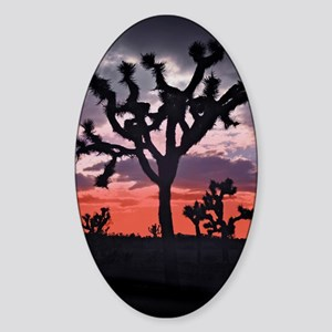 Joshua Tree Sticker (Oval)