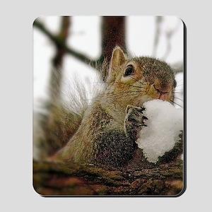 Squirrel Snowcone Mousepad