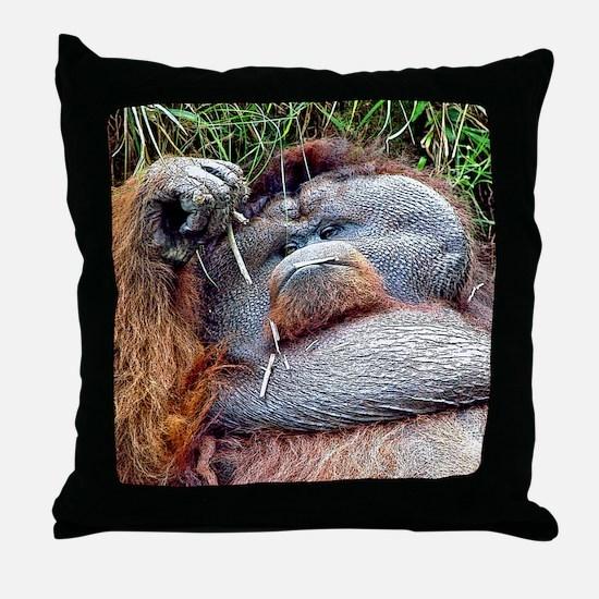 Life of Riley - Orangutan Throw Pillow