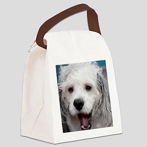 Laughing Yogi Canvas Lunch Bag